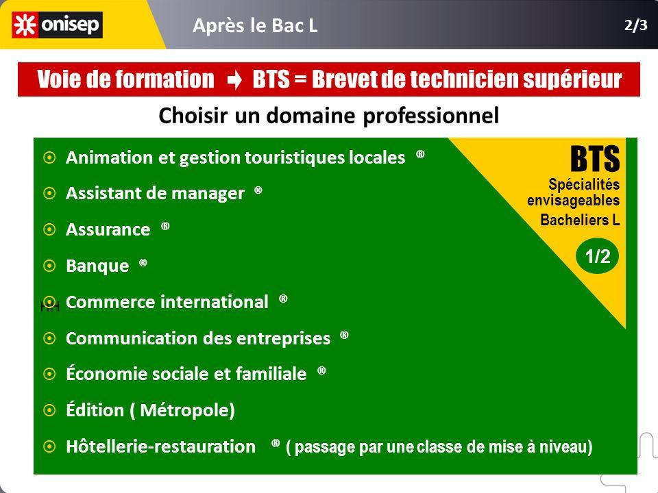 Choisir un domaine professionnel HH Animation et gestion touristiques locales ® Assistant de manager ® Assurance ® Banque ® Commerce international ® C