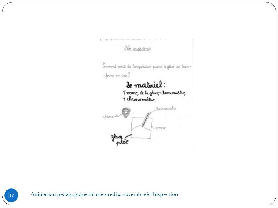 Animation pédagogique du mercredi 4 novembre à l'Inspection 37