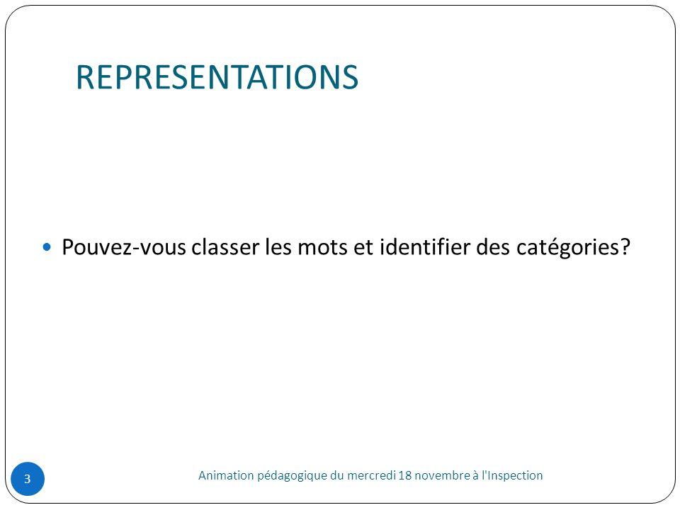 REPRESENTATIONS Animation pédagogique du mercredi 18 novembre à l'Inspection 3 Pouvez-vous classer les mots et identifier des catégories?