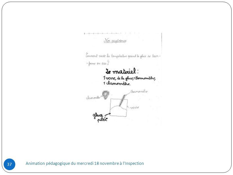 Animation pédagogique du mercredi 18 novembre à l'Inspection 37
