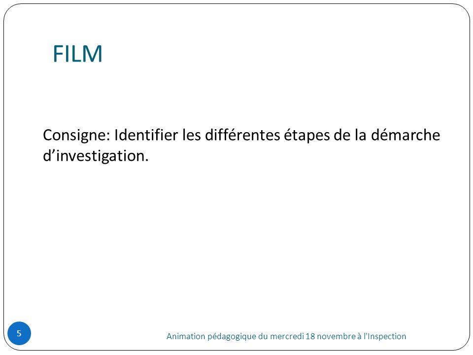 FILM Animation pédagogique du mercredi 18 novembre à l'Inspection 5 Consigne: Identifier les différentes étapes de la démarche dinvestigation.