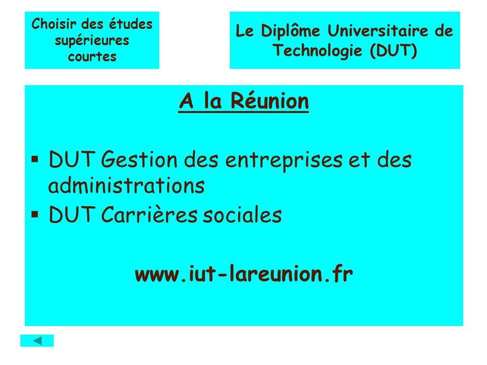Choisir des études supérieures courtes A la Réunion DUT Gestion des entreprises et des administrations DUT Carrières sociales www.iut-lareunion.fr Le Diplôme Universitaire de Technologie (DUT)