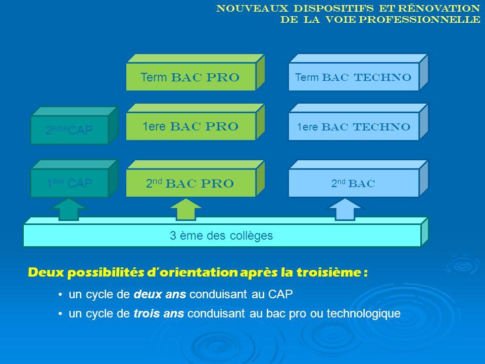 Nouveaux dispositifs et rénovation de la voie professionnelle 3 ème des collèges 2 nd bac pro Term bac pro 1ere bac pro 2 ème CAP 1 ère CAP 1ere bac t