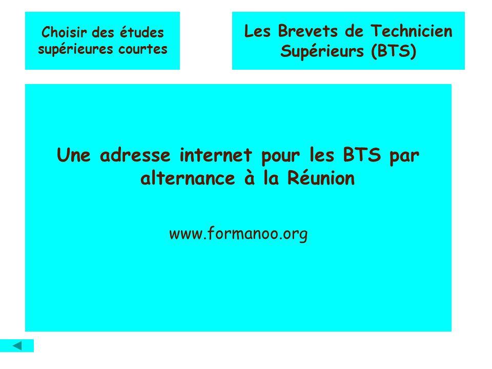 Choisir des études supérieures courtes Les Brevets de Technicien Supérieurs (BTS) Une adresse internet pour les BTS par alternance à la Réunion www.formanoo.org