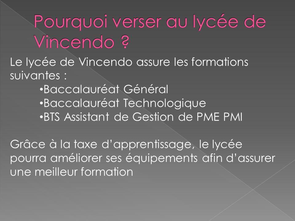 Le lycée de Vincendo assure les formations suivantes : Baccalauréat Général Baccalauréat Technologique BTS Assistant de Gestion de PME PMI Grâce à la