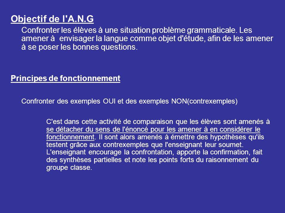 Objectif de l'A.N.G Confronter les élèves à une situation problème grammaticale. Les amener à envisager la langue comme objet d'étude, afin de les ame