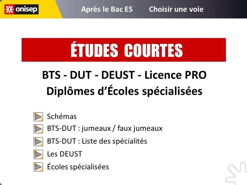 BTS - DUT - DEUST - Licence PRO Diplômes dÉcoles spécialisées Schémas BTS-DUT : jumeaux / faux jumeaux BTS-DUT : Liste des spécialités Les DEUST École