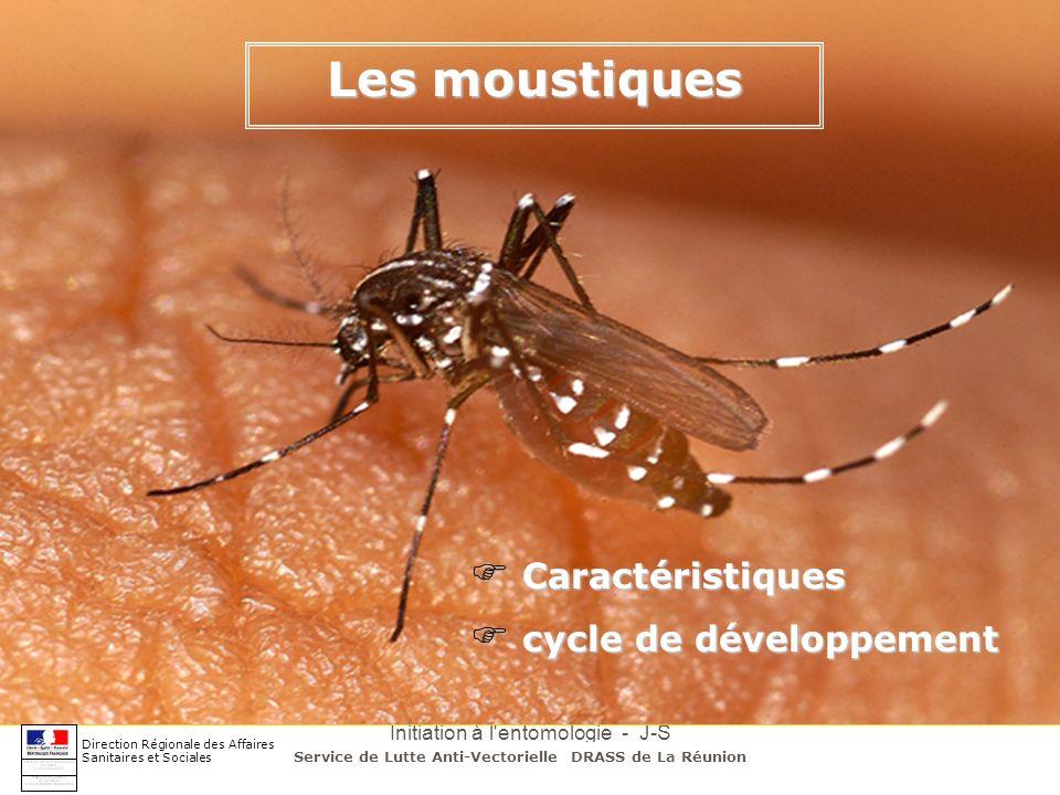 Initiation à l'entomologie - J-S DEHECQ Les moustiques Direction Régionale des Affaires Sanitaires et Sociales Caractéristiques Caractéristiques cycle