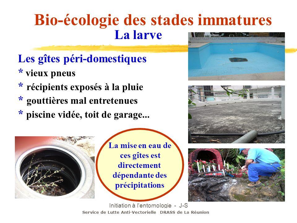 Initiation à l'entomologie - J-S DEHECQ Les gîtes péri-domestiques * vieux pneus * récipients exposés à la pluie * gouttières mal entretenues * piscin