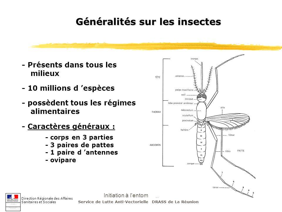 Initiation à l'entomologie - J-S DEHECQ Généralités sur les insectes - corps en 3 parties - 3 paires de pattes - 1 paire d antennes - ovipare Directio