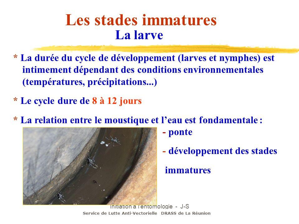 Initiation à l'entomologie - J-S DEHECQ * La durée du cycle de développement (larves et nymphes) est intimement dépendant des conditions environnement