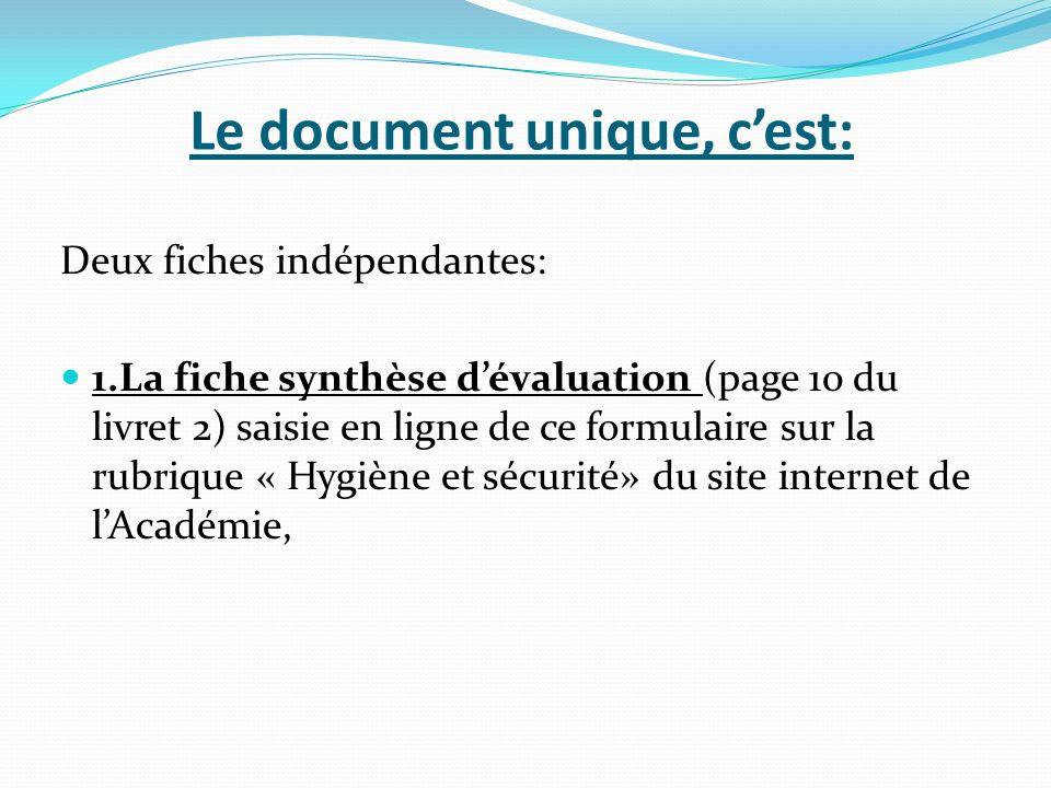 Le document unique, cest: Deux fiches indépendantes: 1.La fiche synthèse dévaluation (page 10 du livret 2) saisie en ligne de ce formulaire sur la rub