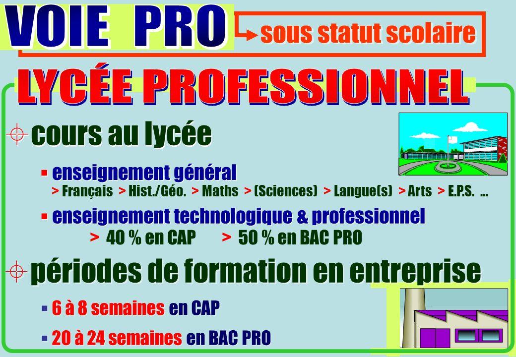> 40 % en CAP > 50 % en BAC PRO 6 à 8 semaines en CAP 20 à 24 semaines en BAC PRO > Français > Hist./Géo.