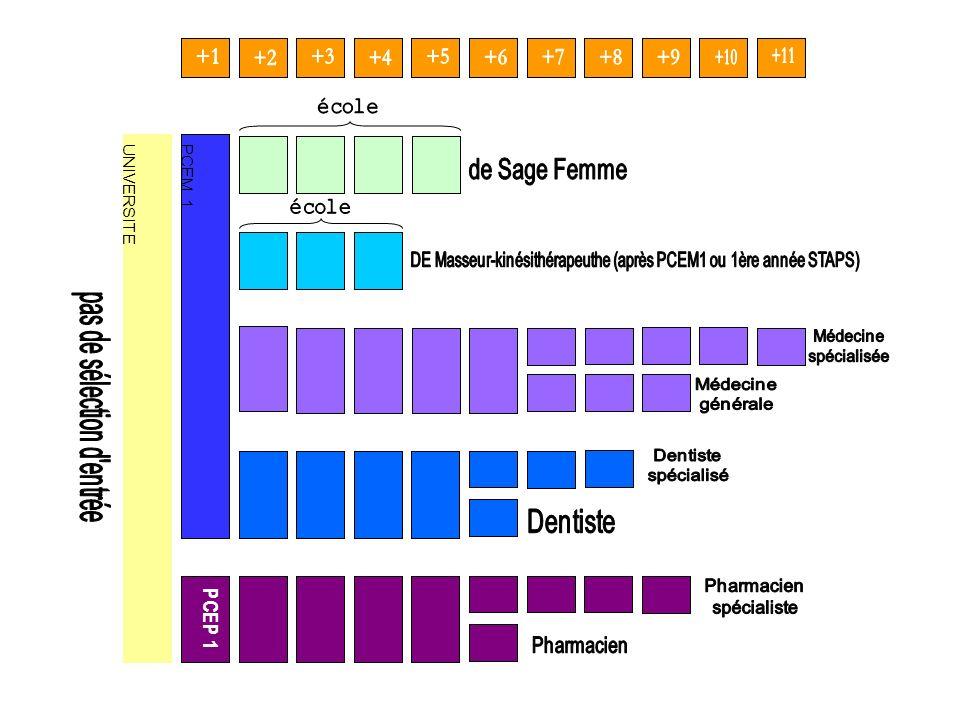 UNIVERSITE PCEM 1 PCEP 1