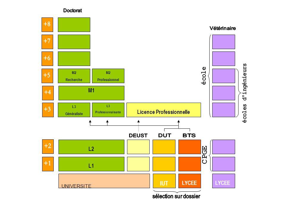UNIVERSITE L1 IUT LYCEE L3 Professionnalisante L3 Généraliste L2 M1 M2 Professionnel M2 Recherche Licence Professionnelle