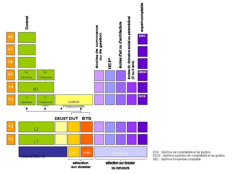 UNIVERSITE L1 IUTLYCEE ECOLES L3 Professionna lisante L3 Généraliste L2 M1 M2 Professionne l M2 Recherche Licence Professionnelle DCG : diplôme de com