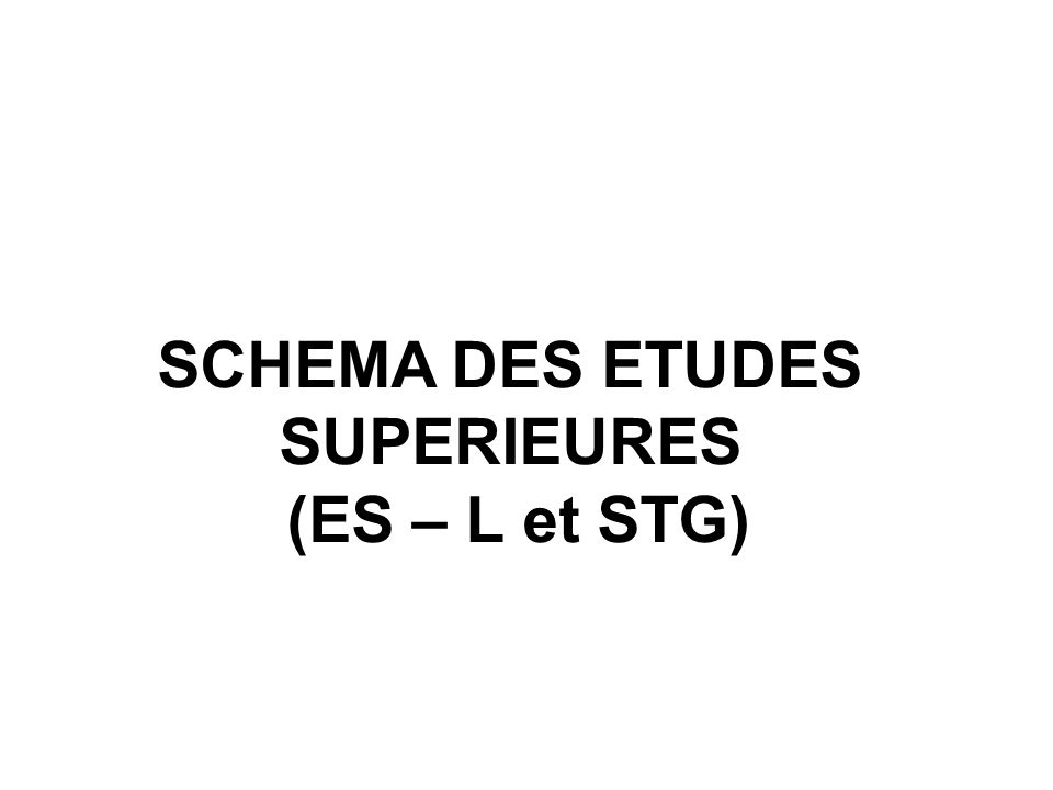 SCHEMA DES ETUDES SUPERIEURES (ES – L et STG)