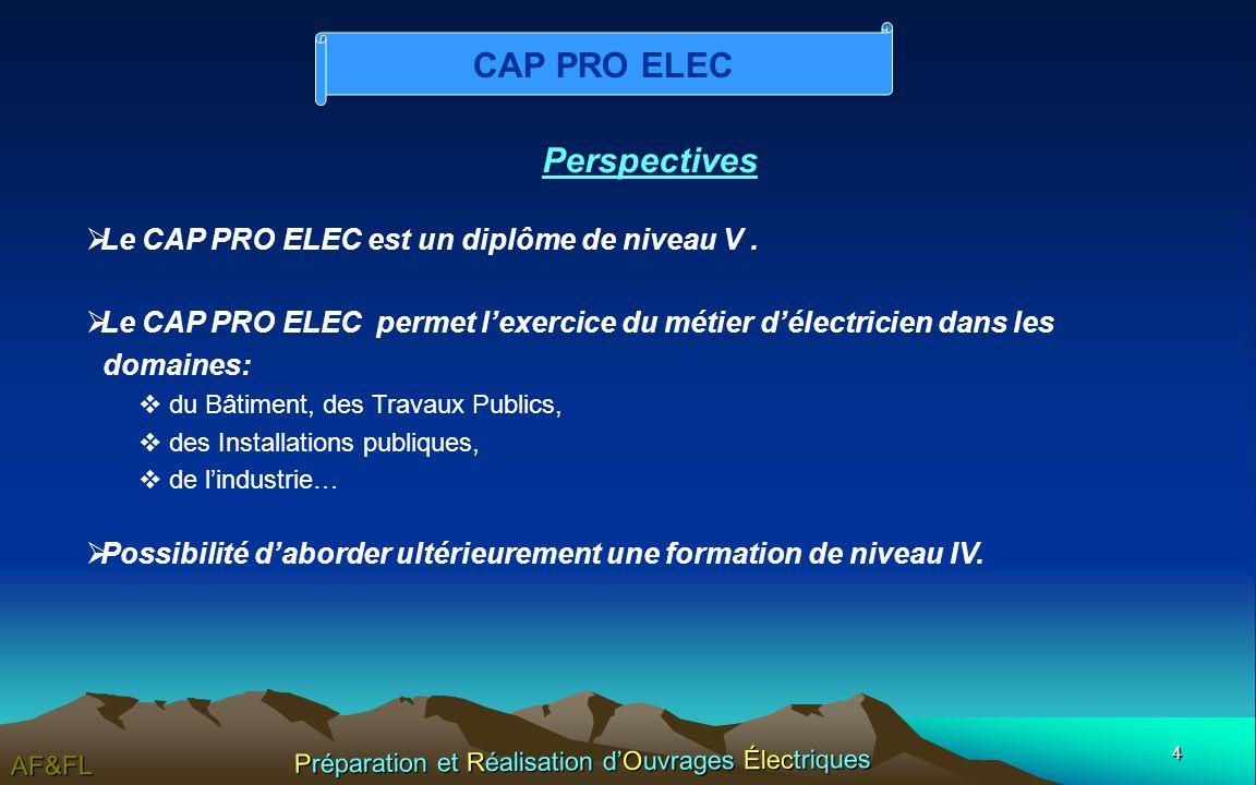 4 AF&FL Préparation et Réalisation dOuvrages Électriques Perspectives Le CAP PRO ELEC est un diplôme de niveau V.