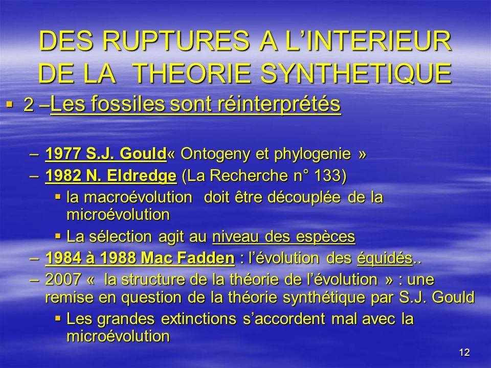 12 DES RUPTURES A LINTERIEUR DE LA THEORIE SYNTHETIQUE 2 – Les fossiles sont réinterprétés 2 – Les fossiles sont réinterprétés –1977 S.J. Gould« Ontog