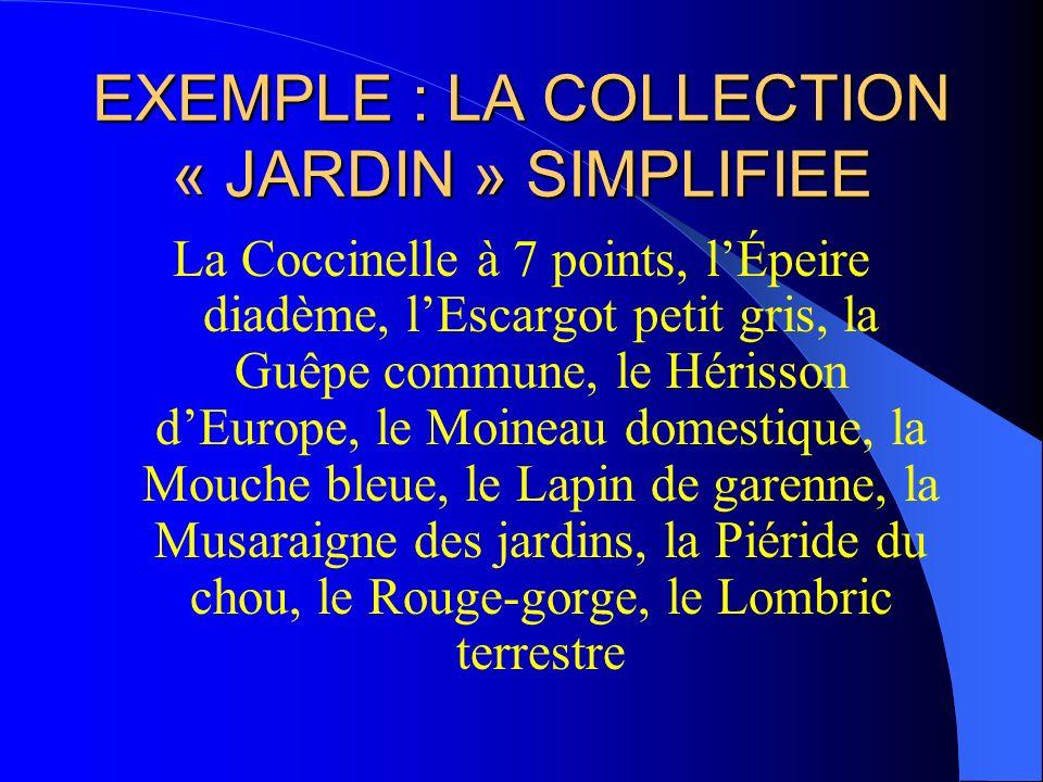 EXEMPLE : LA COLLECTION « JARDIN » SIMPLIFIEE La Coccinelle à 7 points, lÉpeire diadème, lEscargot petit gris, la Guêpe commune, le Hérisson dEurope,