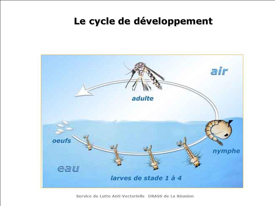 Le cycle de développement Service de Lutte Anti-Vectorielle DRASS de La Réunion
