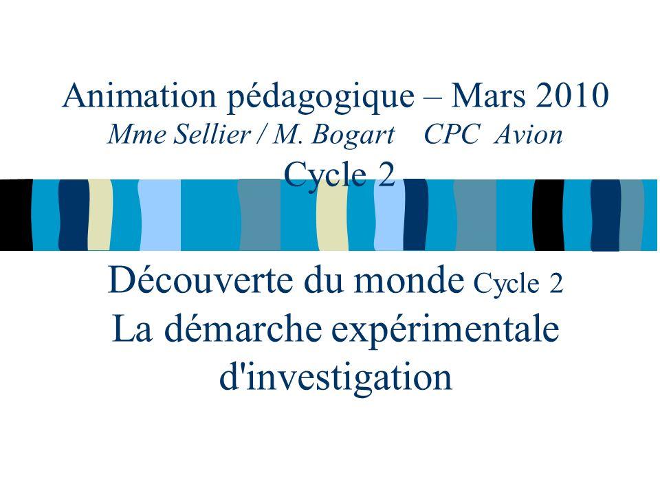 Animation pédagogique – Mars 2010 Mme Sellier / M.