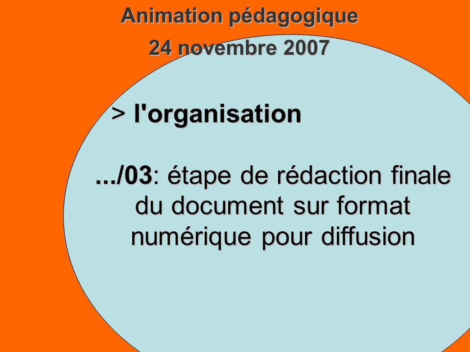 Animation pédagogique 24 novembre 2007 > l organisation.../03: étape de rédaction finale du document sur format numérique pour diffusion
