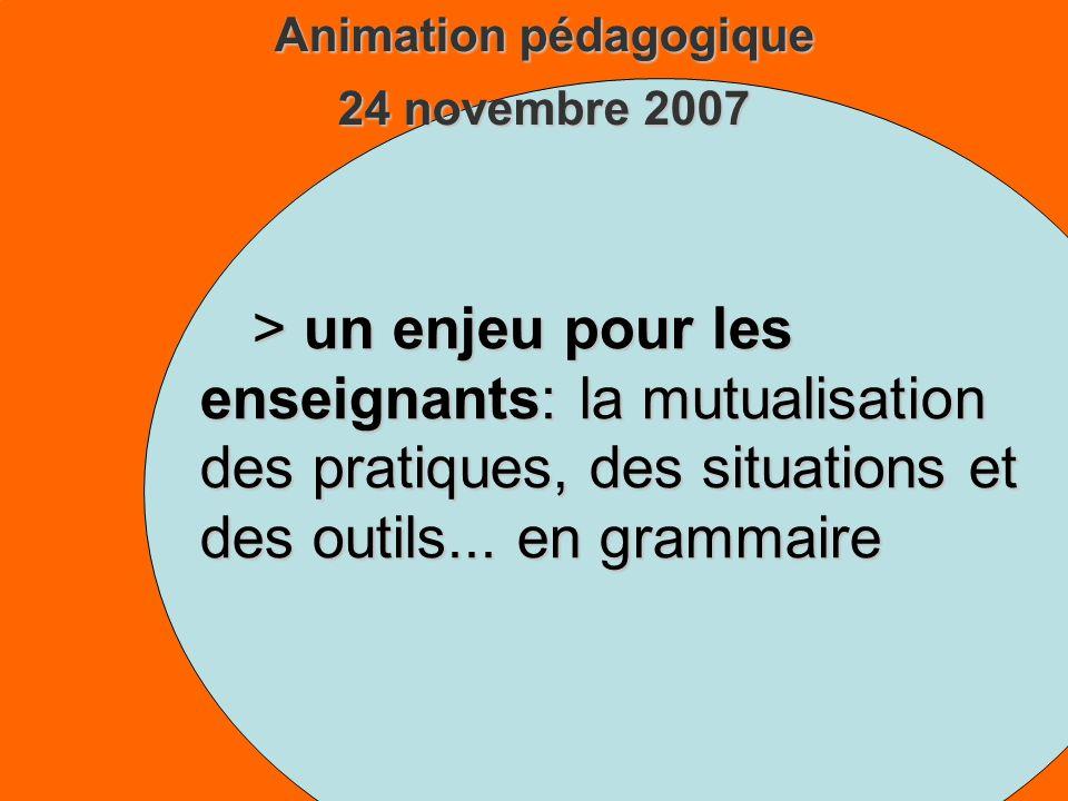 Animation pédagogique 24 novembre 2007 > un enjeu pour les enseignants: la mutualisation des pratiques, des situations et des outils...