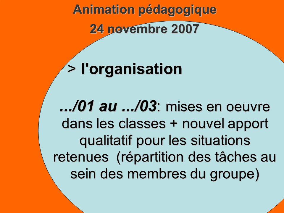 Animation pédagogique 24 novembre 2007 > l organisation.../01 au.../03: mises en oeuvre dans les classes + nouvel apport qualitatif pour les situations retenues (répartition des tâches au sein des membres du groupe)