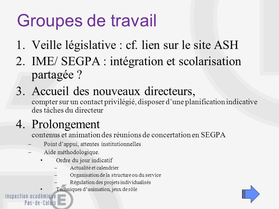 Groupes de travail 1.Veille législative : cf. lien sur le site ASH 2.IME/ SEGPA : intégration et scolarisation partagée ? 3.Accueil des nouveaux direc