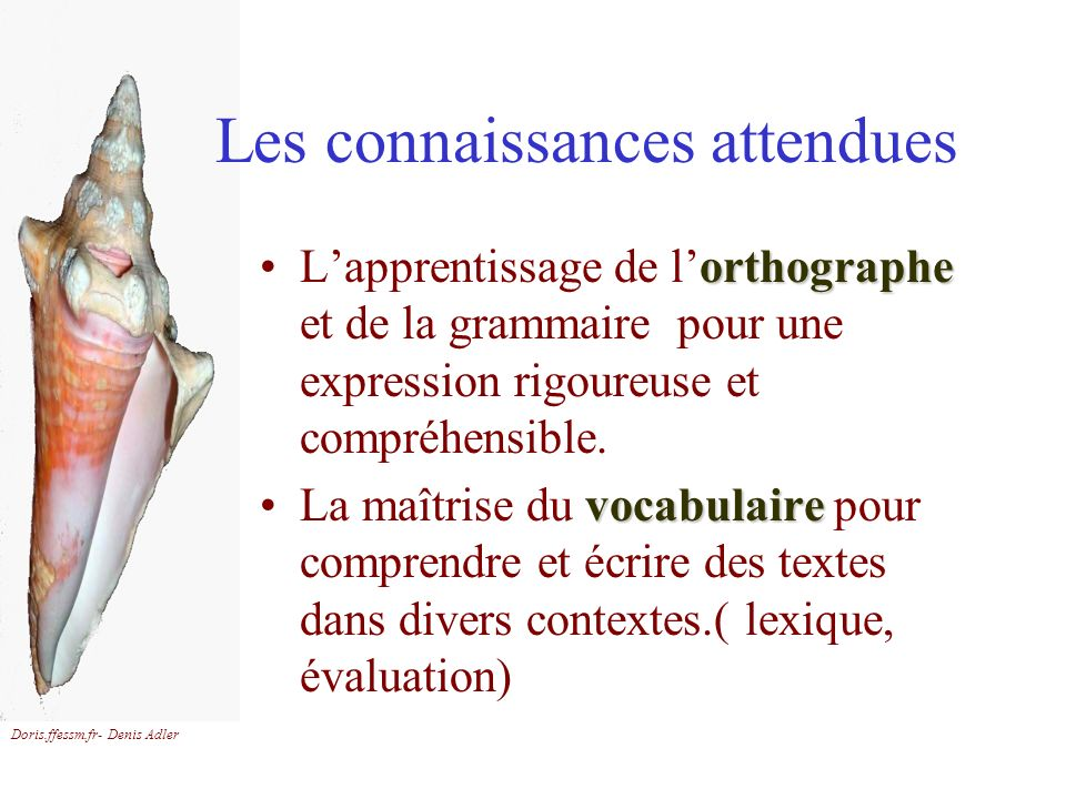 Doris.ffessm.fr- Denis Adler Les connaissances attendues orthographeLapprentissage de lorthographe et de la grammaire pour une expression rigoureuse e