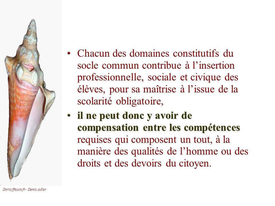 Doris.ffessm.fr- Denis Adler Chacun des domaines constitutifs du socle commun contribue à linsertion professionnelle, sociale et civique des élèves, p