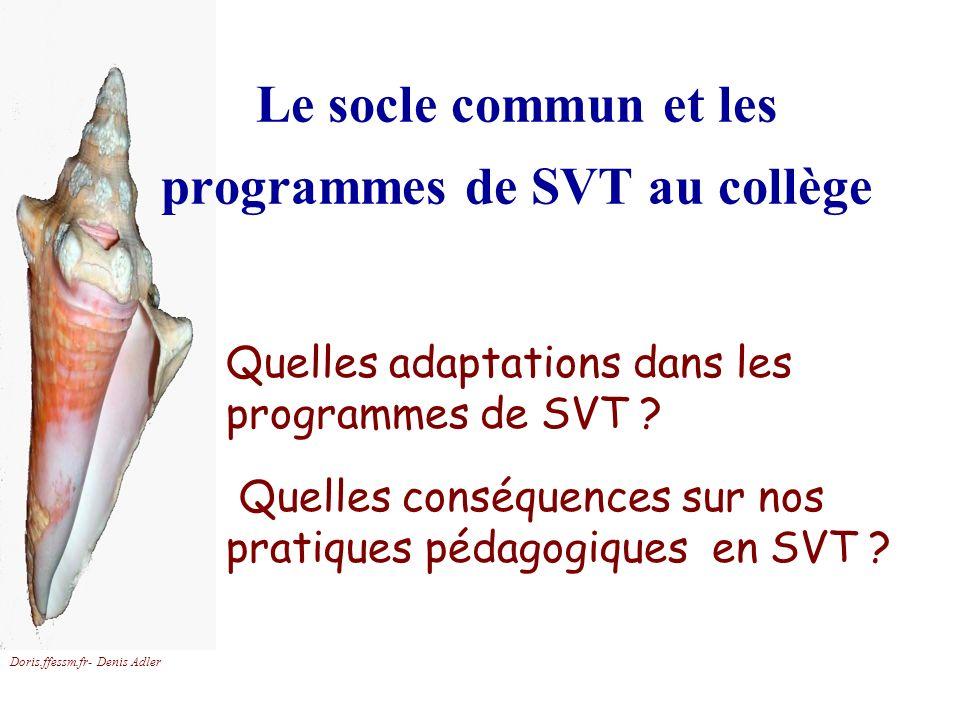 Doris.ffessm.fr- Denis Adler Le socle commun et les programmes de SVT au collège Quelles adaptations dans les programmes de SVT ? Quelles conséquences