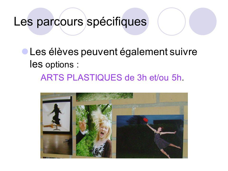Les parcours spécifiques Les élèves peuvent également suivre les options : ARTS PLASTIQUES de 3h et/ou 5h.