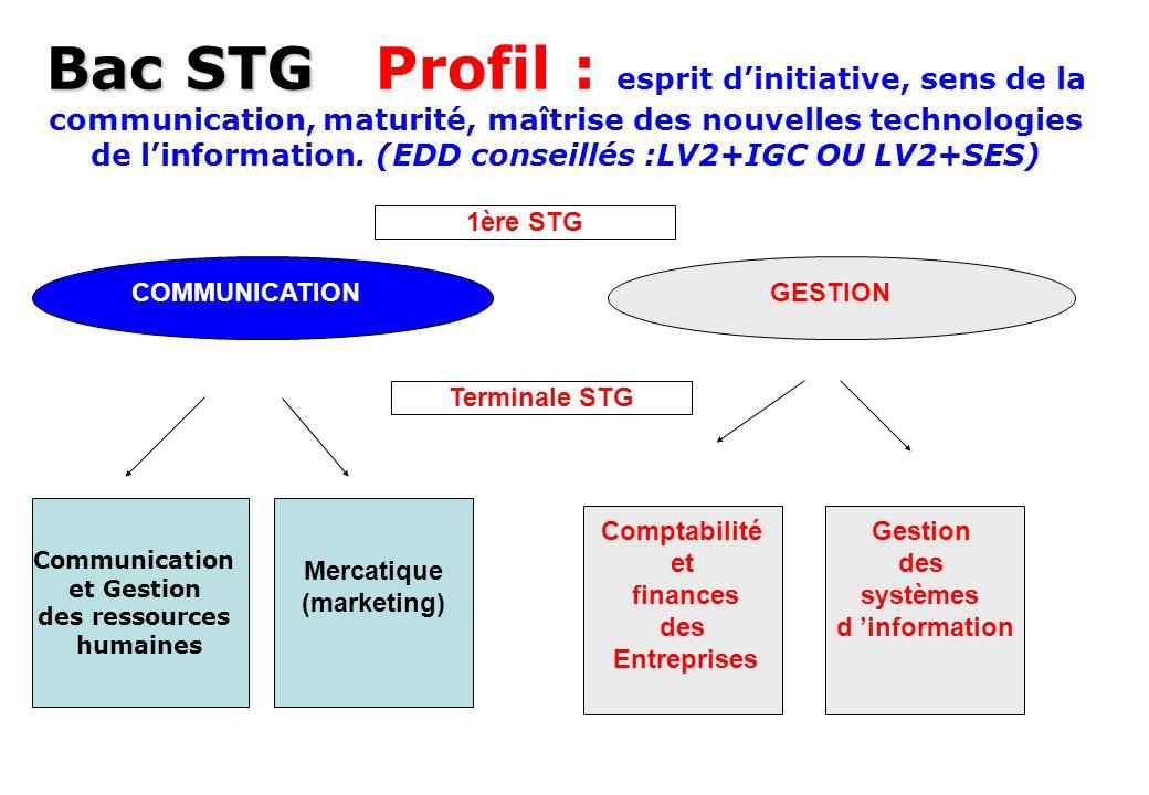 Bac STG Bac STG Profil : esprit dinitiative, sens de la communication, maturité, maîtrise des nouvelles technologies de linformation. (EDD conseillés