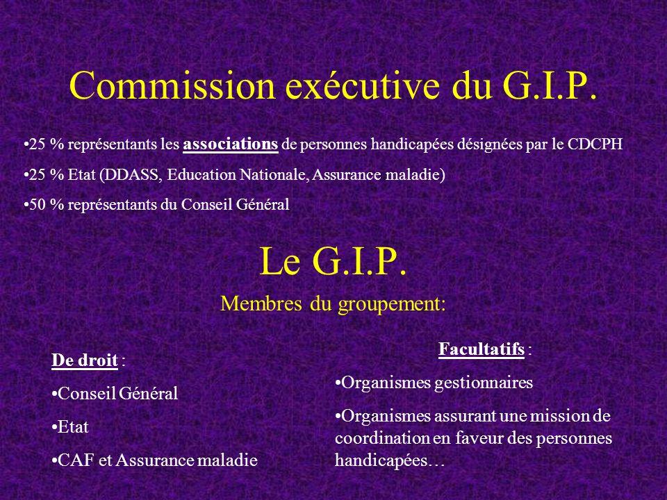 Commission exécutive du G.I.P.Le G.I.P.