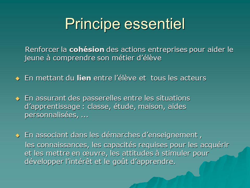 Principe essentiel Renforcer la cohésion des actions entreprises pour aider le jeune à comprendre son métier délève Renforcer la cohésion des actions