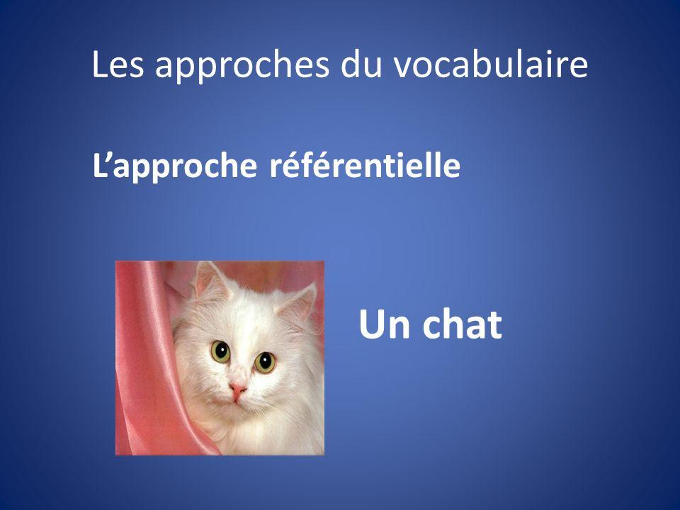 Les approches du vocabulaire Un chat Lapproche référentielle
