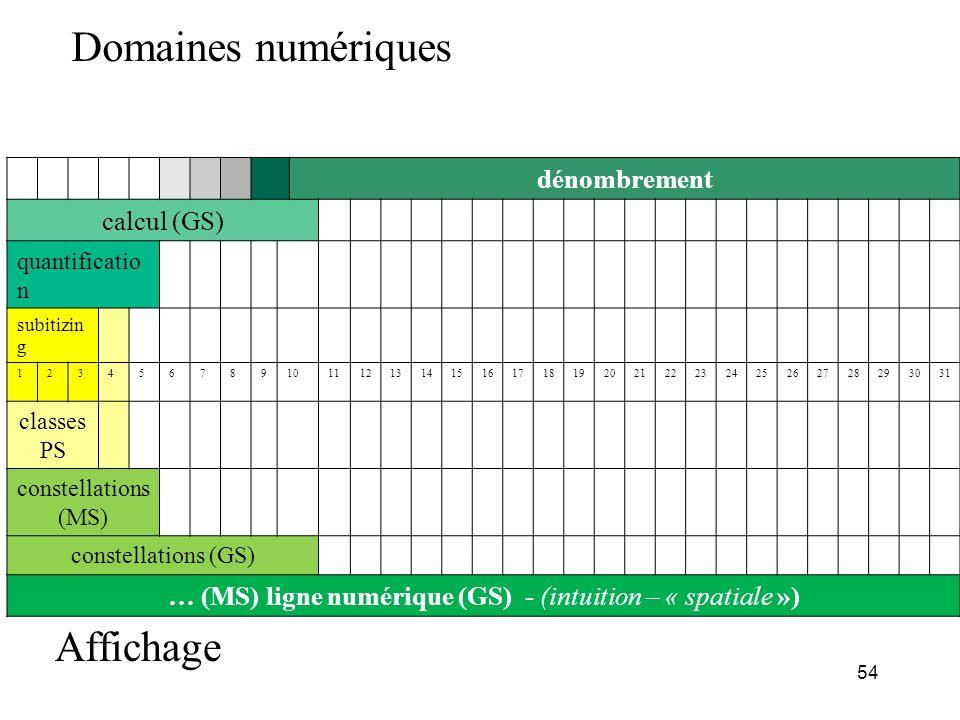 dénombrement calcul (GS) quantificatio n subitizin g 12345678910111213141516171819202122232425262728293031 classes PS constellations (MS) constellatio