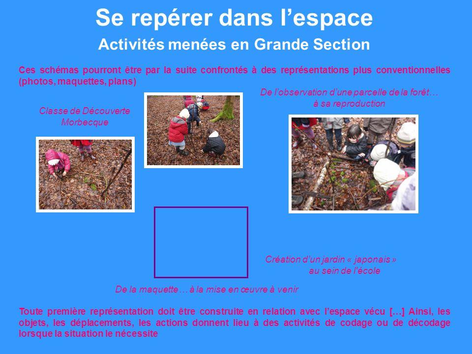 Se repérer dans lespace Les formes et les grandeurs Sites et logiciels http://dbigeard.fr/ Tangram niveau 1Tangram niveau 2Tangram niveau 3 Symétrie Tangram