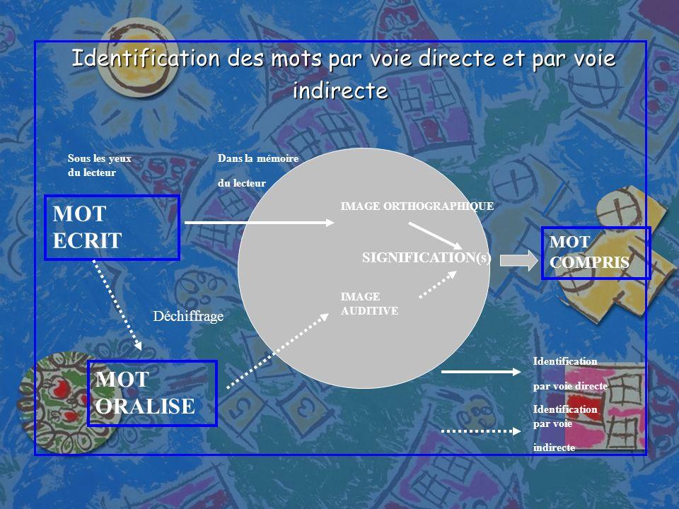 Identification des mots par voie directe et par voie Identification des mots par voie directe et par voieindirecte MOT ECRIT MOT ORALISE Déchiffrage I