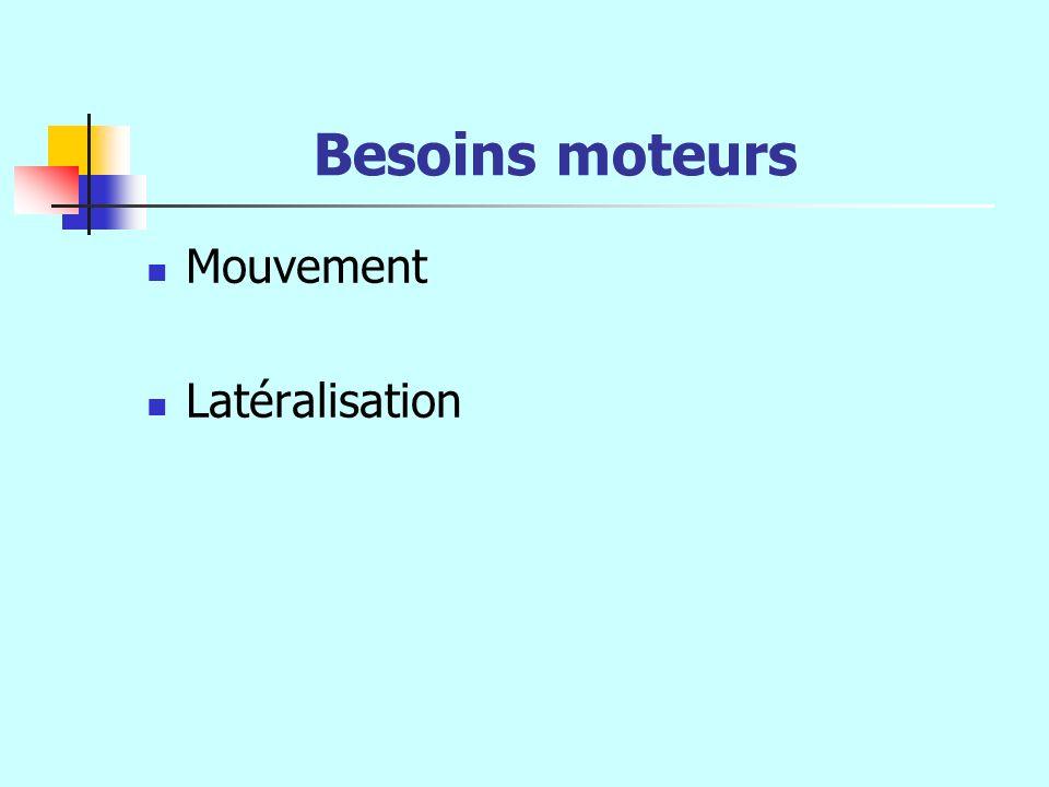 Besoins moteurs Mouvement Latéralisation
