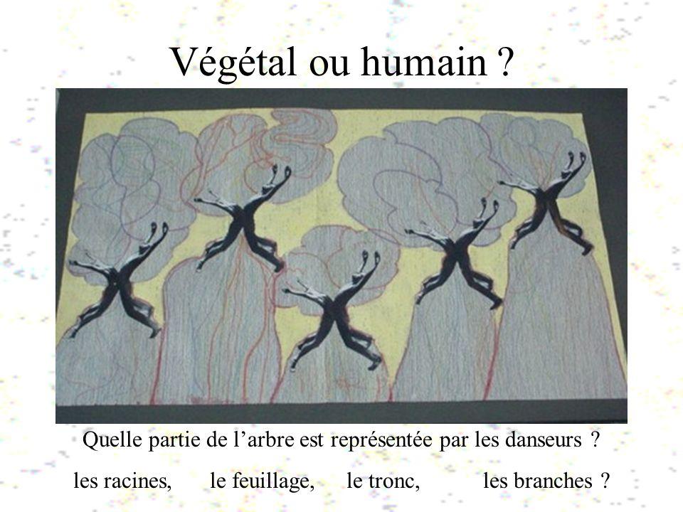 Végétal ou humain ? Quelle partie de larbre est représentée par les danseurs ? les racines, le feuillage, le tronc, les branches ?