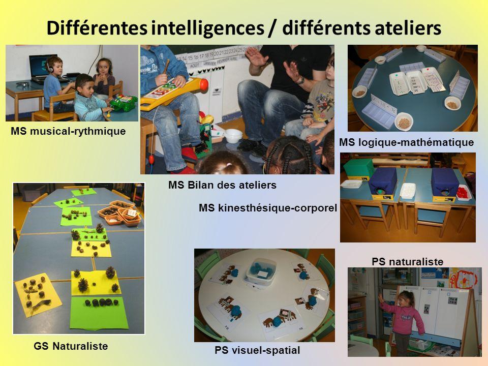 Différentes intelligences / différents ateliers PS visuel-spatial PS naturaliste MS logique-mathématique MS Bilan des ateliers MS musical-rythmique MS