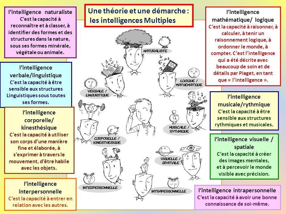 visuelle-spatiale Kinesthésique - corporelle verbale-linguistique naturalistemusicale-rythmique logique-mathématique