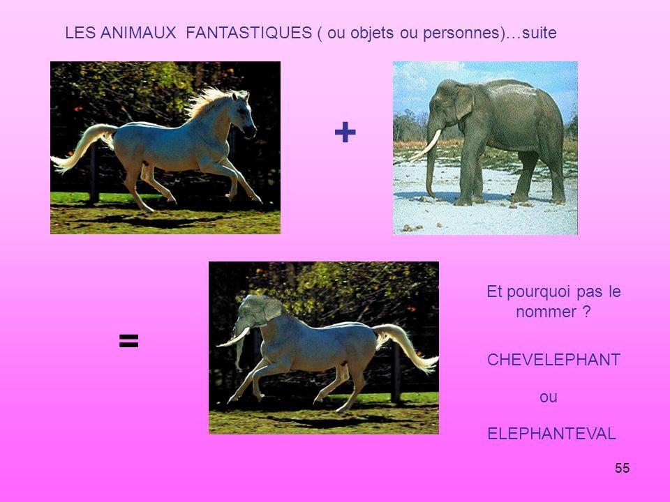 55 LES ANIMAUX FANTASTIQUES ( ou objets ou personnes)…suite + = Et pourquoi pas le nommer ? CHEVELEPHANT ou ELEPHANTEVAL