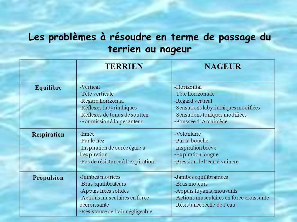 Les problèmes à résoudre en terme de passage du terrien au nageur TERRIENNAGEUR Equilibre -Vertical -Tête verticale -Regard horizontal -Réflexes labyr