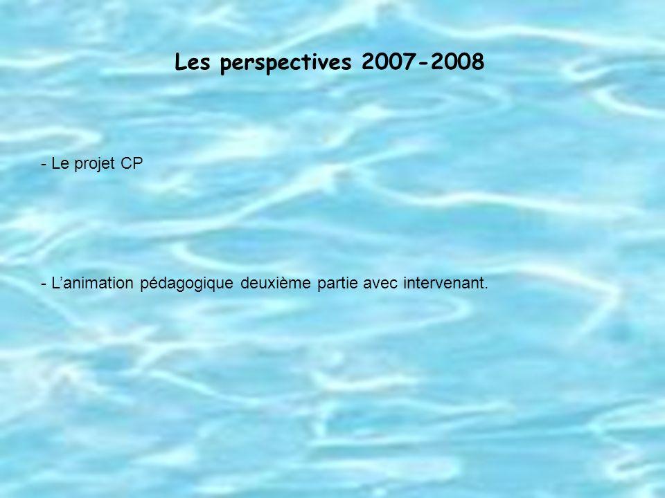 Les perspectives 2007-2008 - Le projet CP - Lanimation pédagogique deuxième partie avec intervenant.