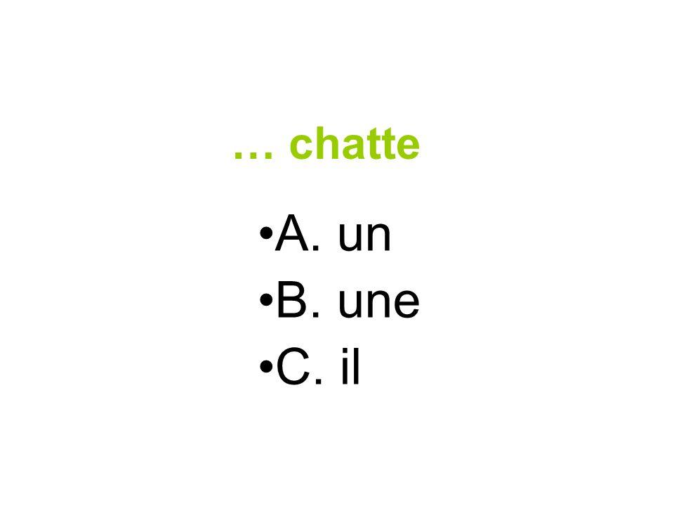 … chatte A. un B. une C. il