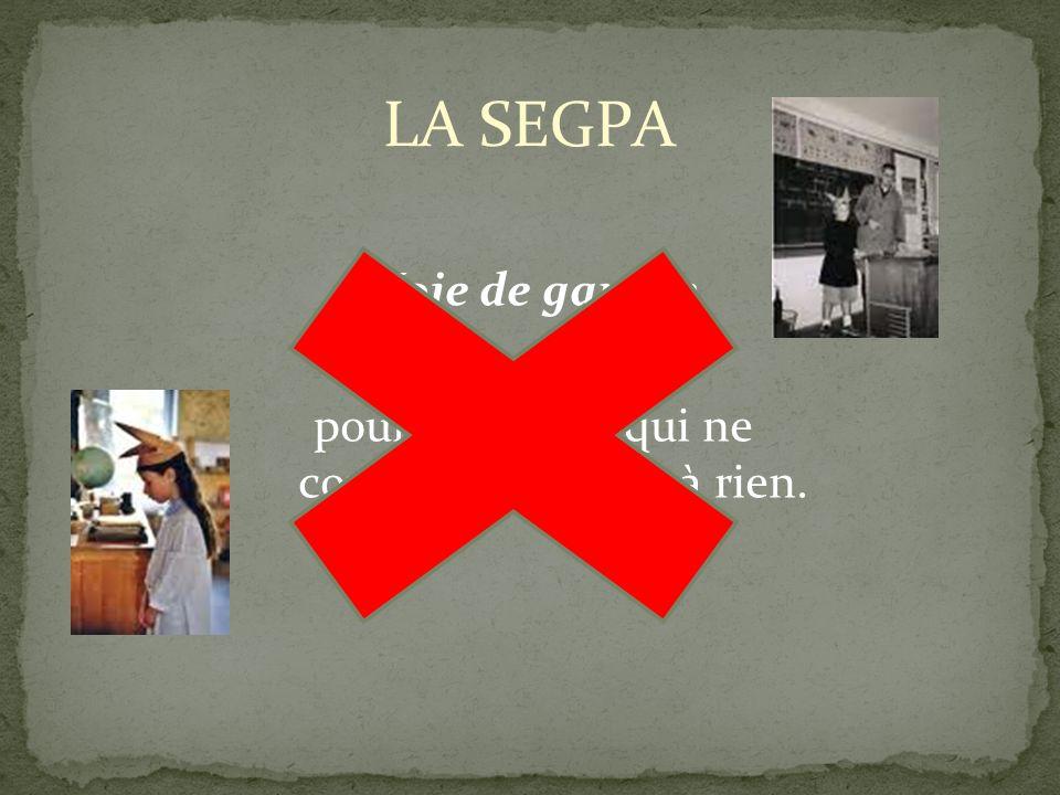 La SEGPA nest en rien le prolongement naturel de la CLIS.